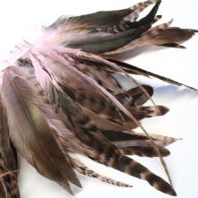 Chinchilla Full Coque Pale Pink Feathers 14-18cm Long x 5cm